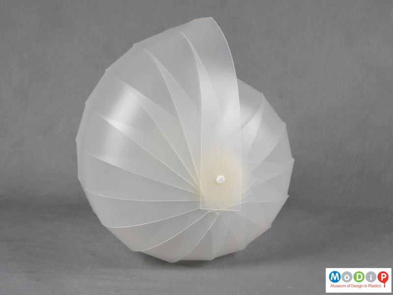 Side view of a lampshade showing the shell-like shape.