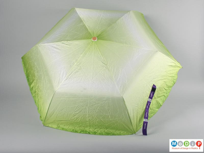 Top view of an umbrella showing the canopy open.