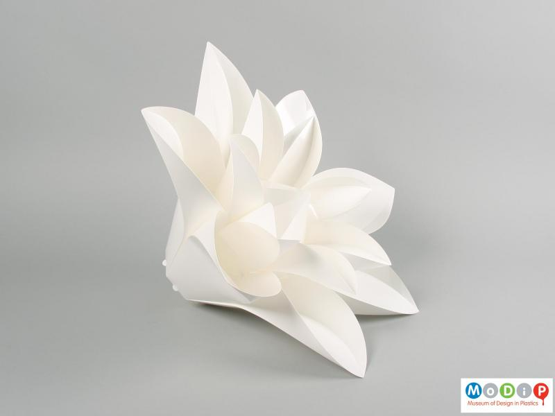 Side view of a lamp shade showing the double layer of petals.