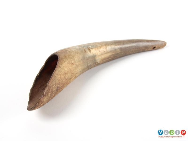 Side view of a drenching horn showing that it is hollow.