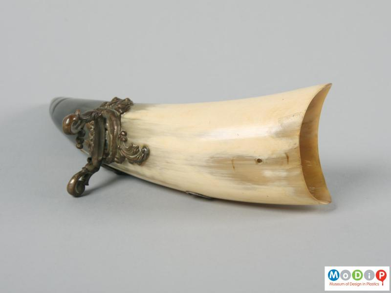 Underside view of a carved horn showing the metal attachments.