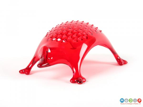 Front view of a grater showing the arched back of the hedgehog.