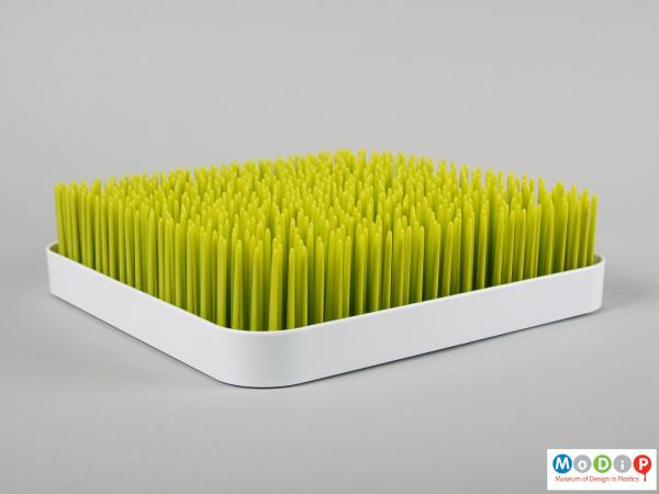 Side view of a drying tray showing straight blades of grass.