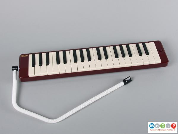 Top view of a melodica showing the wind pipe.