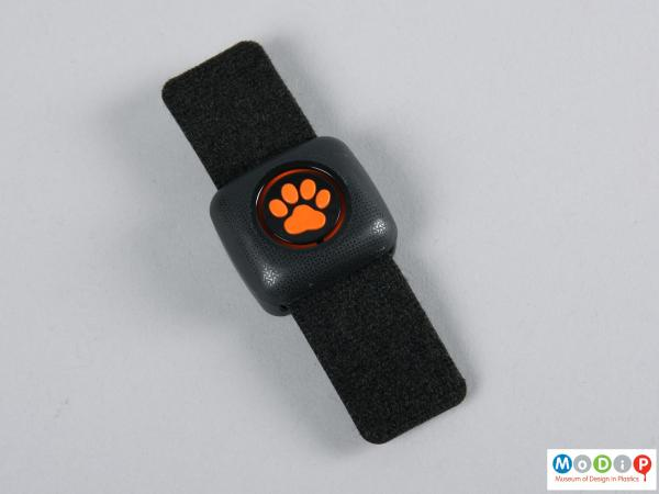 Top view of a tracker showing the paw print logo and collar strap.