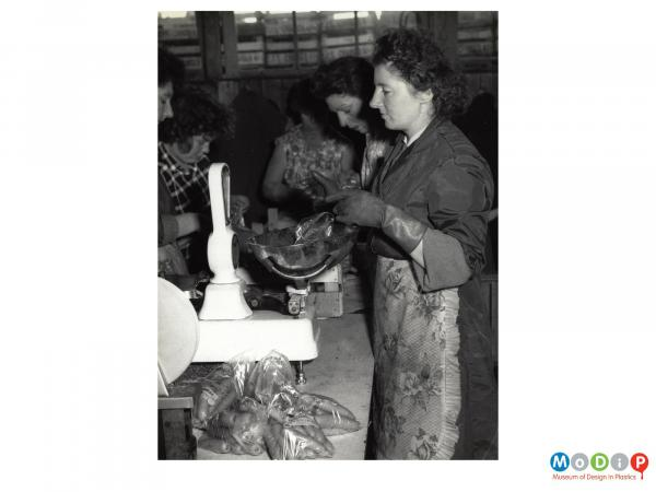 Scanned image showing female workers weighing and bagging carrots.