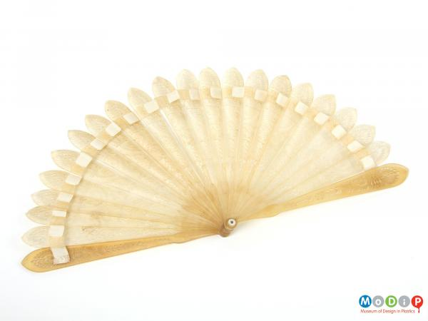 Front view of a fan showing the sticks open.
